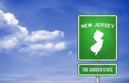 Understanding New Jersey Law Regarding Recreational Cannabis Intake