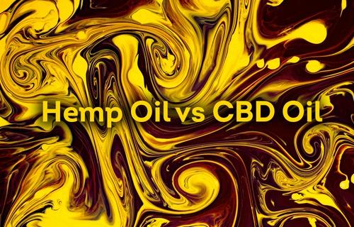 Hemp Oil vs CBD Oil — Which Is Right for You?