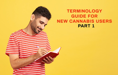 Common Terminology Guide for New Cannabis Users Part 1: Product Options