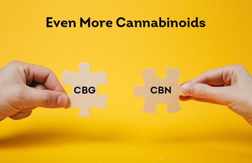 Even More Cannabinoids: Understanding CBG and CBN