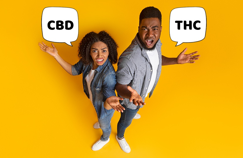 Understanding the Difference Between CBD and THC